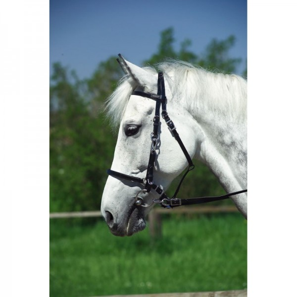 NORTON Wanderreitzaum, Kunststoff Ponygröße