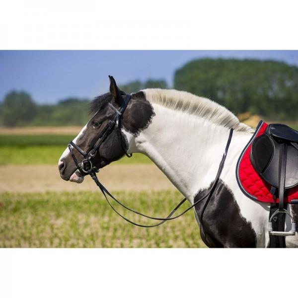 NORTON Trensenzaum, Kunststoff Ponygröße