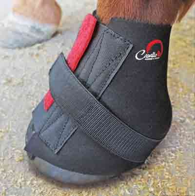 Gamaschen / Fesselschutz für Cavallo Bigfoot (BFB)