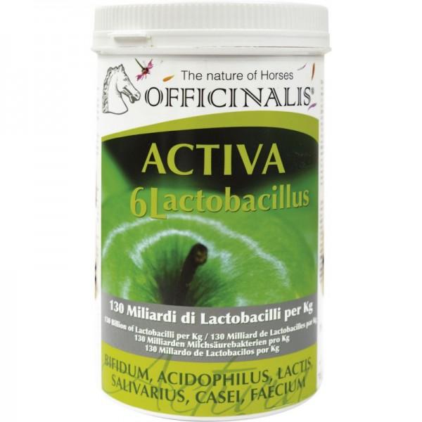 "OFFICINALIS® ""Activa 6L"" Ergänzungsfuttermittel"