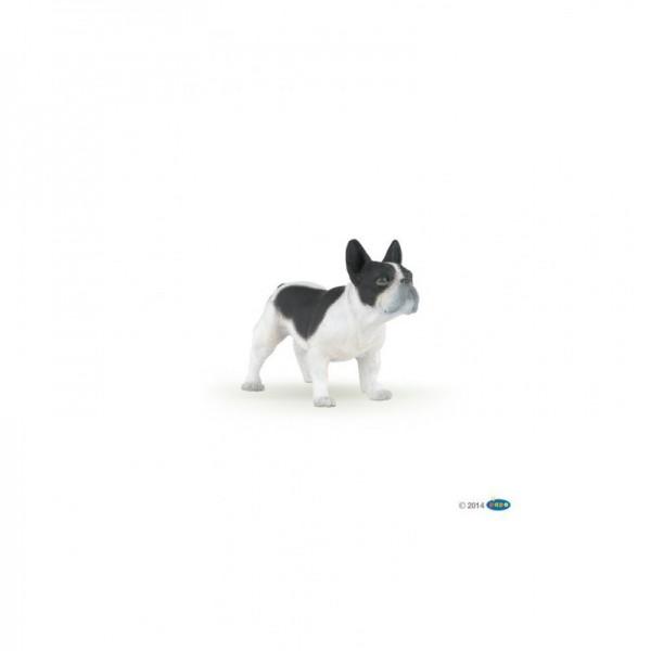 PAPO Französische Bulldogge schwarz-weiß